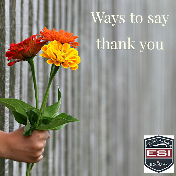 """VOCABULARY 19: Do not say """"you´re welcome""""!"""